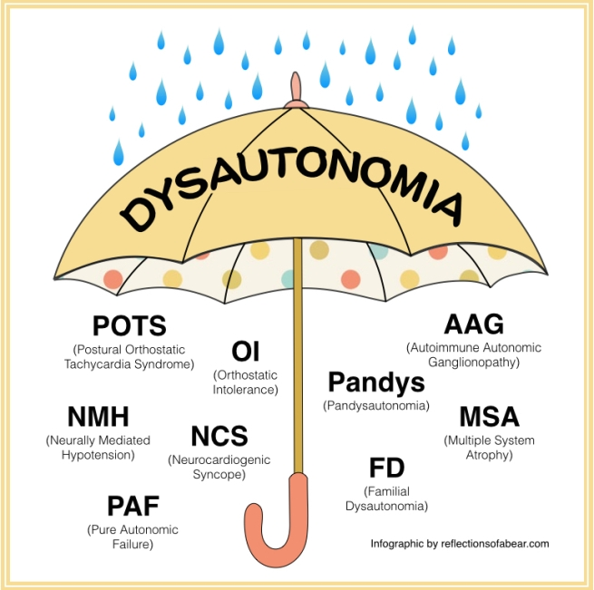 Dysautonomia umbrella