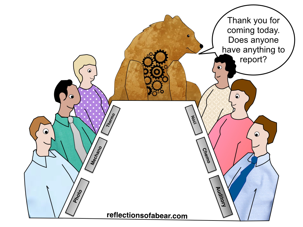Warning! Warning! Sensory overload! – Reflections Of A Bear